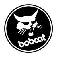 Bobcat_4[1]